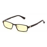 Очки для компьютера SP Glasses AF058, черный